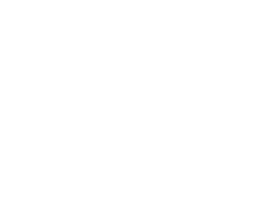 Virtual Success Now